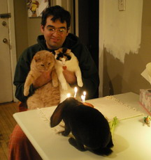 birthday with cats and rabbit